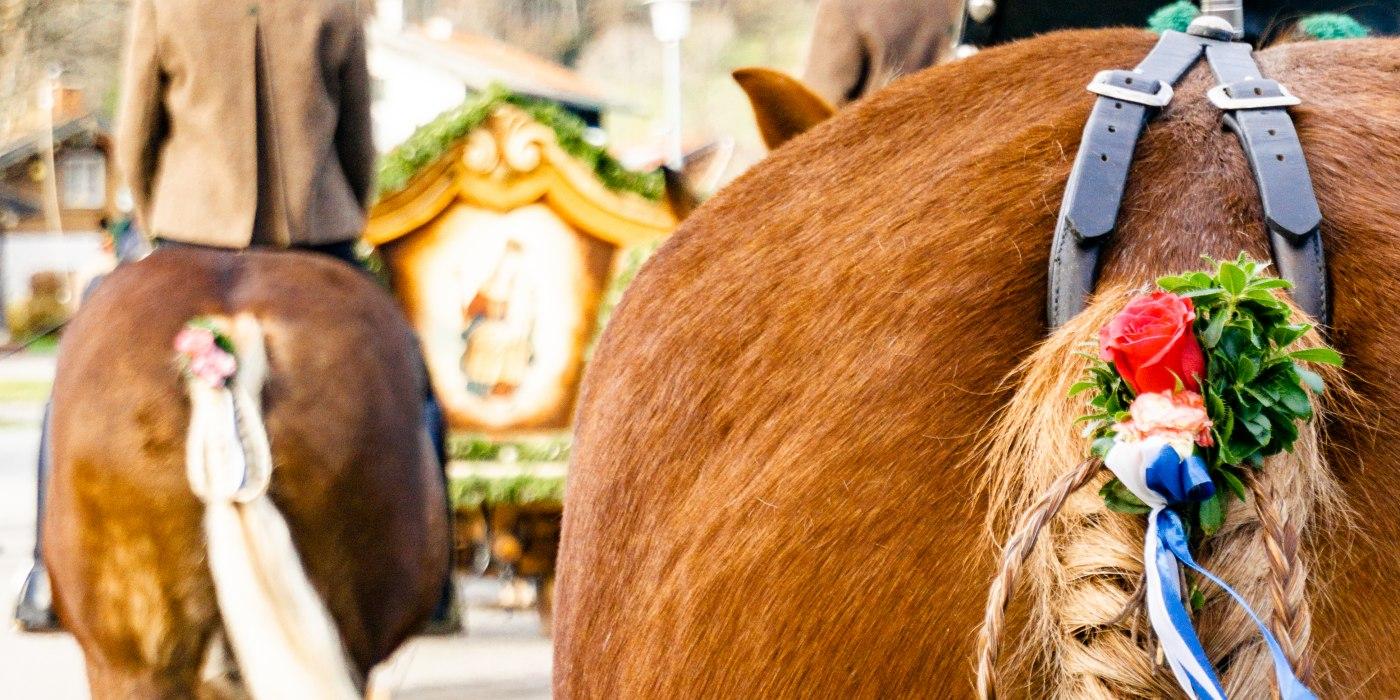 Geschmückter Pferdeschweif am Leonharditag, © Stefanie Pfeiler