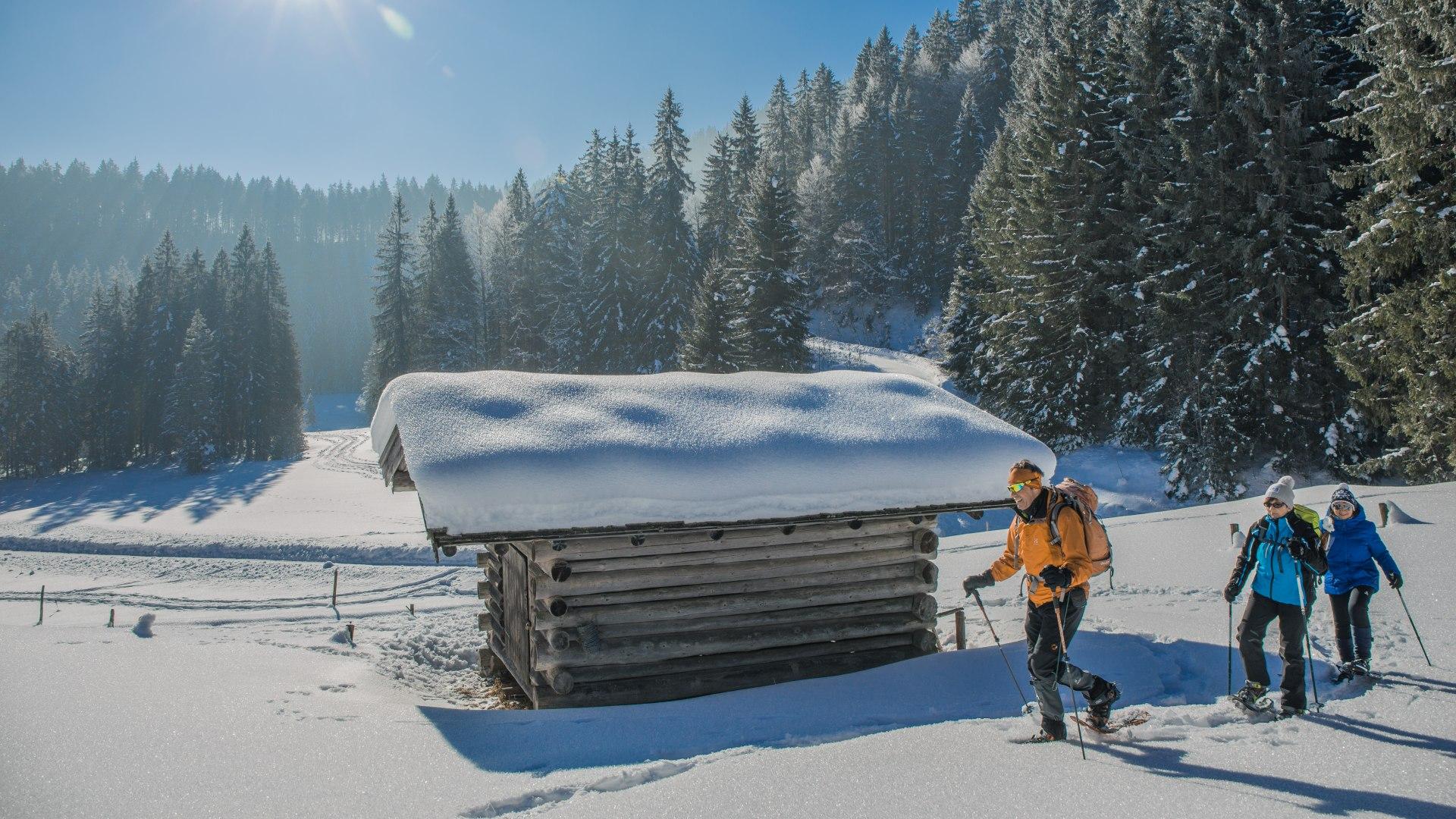 Schneeschuhtour im Suttengebiet, © Christoph Schempershofe
