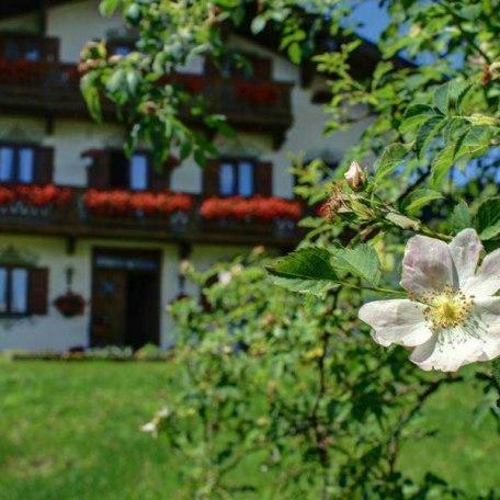 Natur pur, © im-web.de/ Tourist-Information Bad Wiessee
