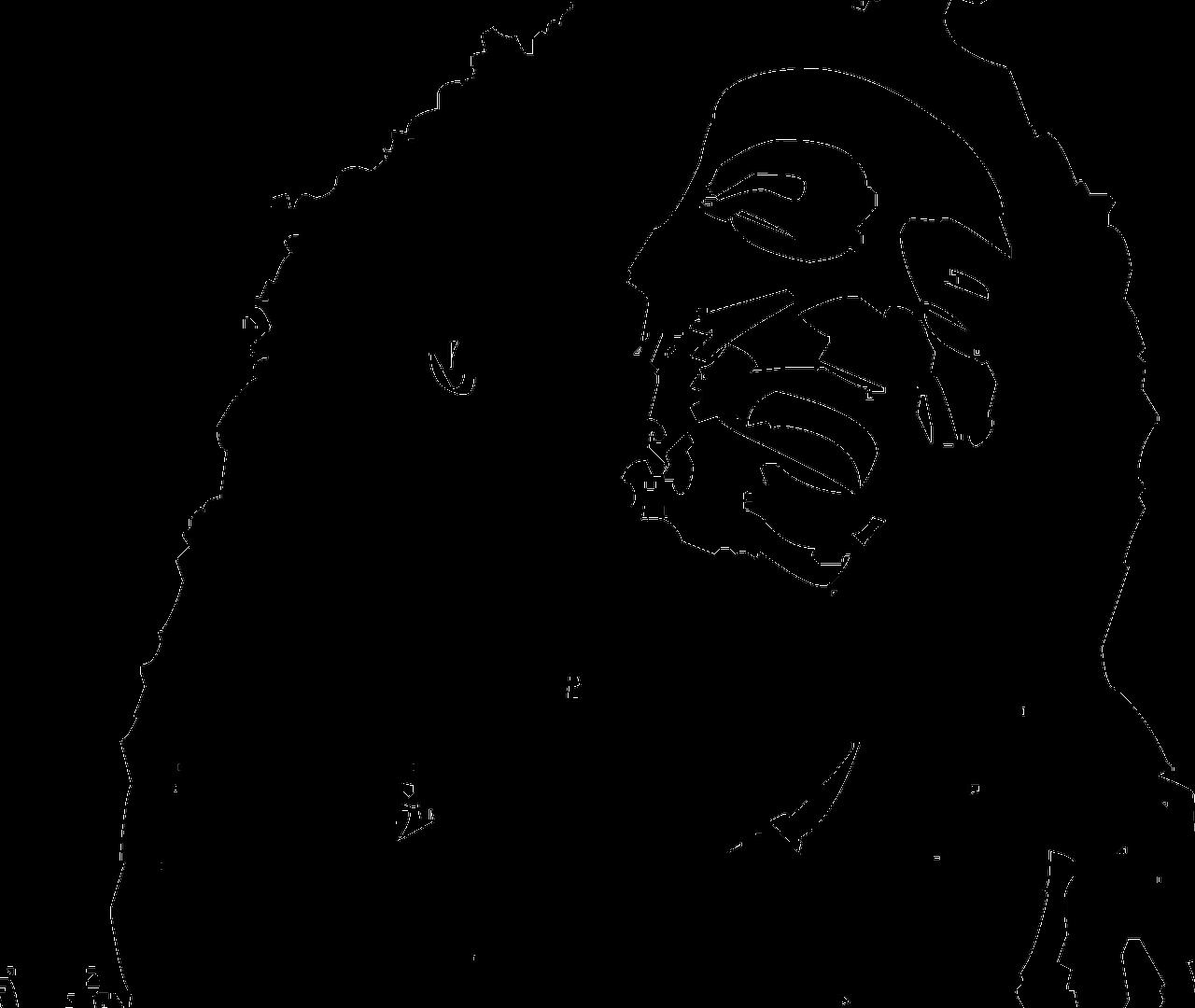 Man mag es nicht glauben, aber Bob Marley verbrachte tatsächlich seine letzten Lebensmonate am Tegernsee.