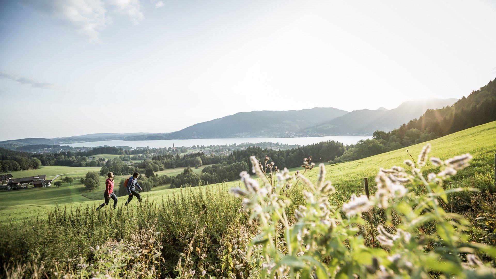 Auf einfachen Wandertour rund um den Tegernsee erklimmen Sie die bayerischen Berge auf gemütliche Art und Weise., © Christoph Schempershofe