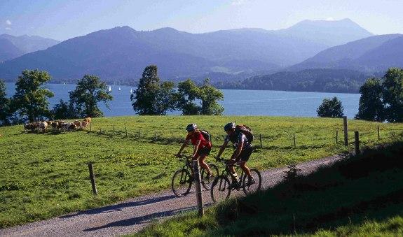 Mountainbiker bei Kaltenbrunn