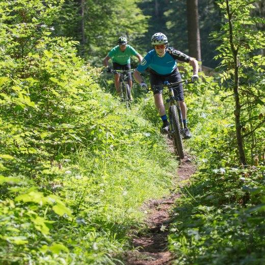 Mountainbiker auf dem Biketrail Langenau am Tegernsee, © Christoph Schempershofe