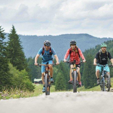 Radwege und geführte Radtouren finden Sie am wunderschönen Tegernsee., © im-web.de/ Tourist-Information Rottach-Egern