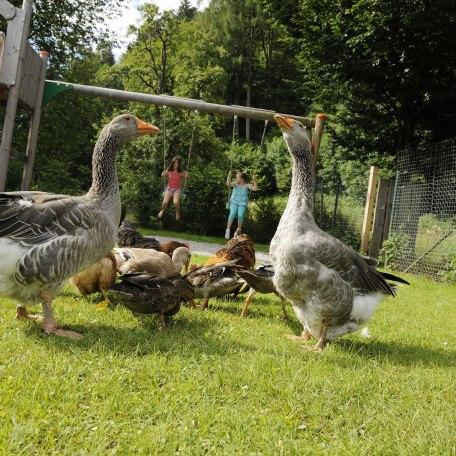 Ein Kinderspielplatz zum toben und spielen steht zur Verfügung, © im-web.de/ Tourist-Information Bad Wiessee