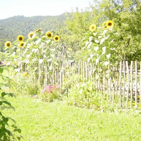 Gemüsegarten mit Blumeneinfassung, © im-web.de/ Tourist-Information Kreuth