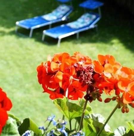 Blick in den Garten, © im-web.de/ Tourist-Information Rottach-Egern