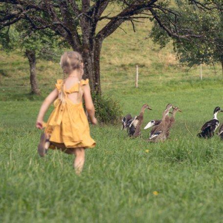 Auf dem Bauernhof können Kinder die Natur hautnah erleben, © Hansi Heckmair