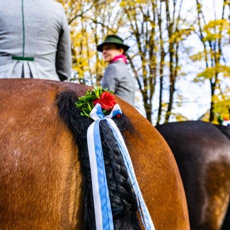 geschmückte Pferde samt Reiterinnen beim Leonhardiritt, © Der Tegernsee, Stefanie Pfeiler