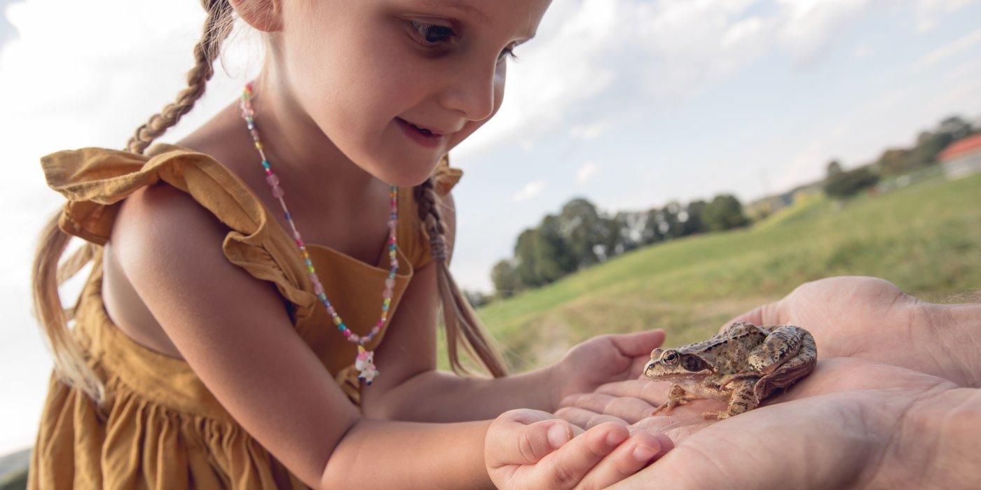 Frosch in der Hand, © Hansi Heckmair