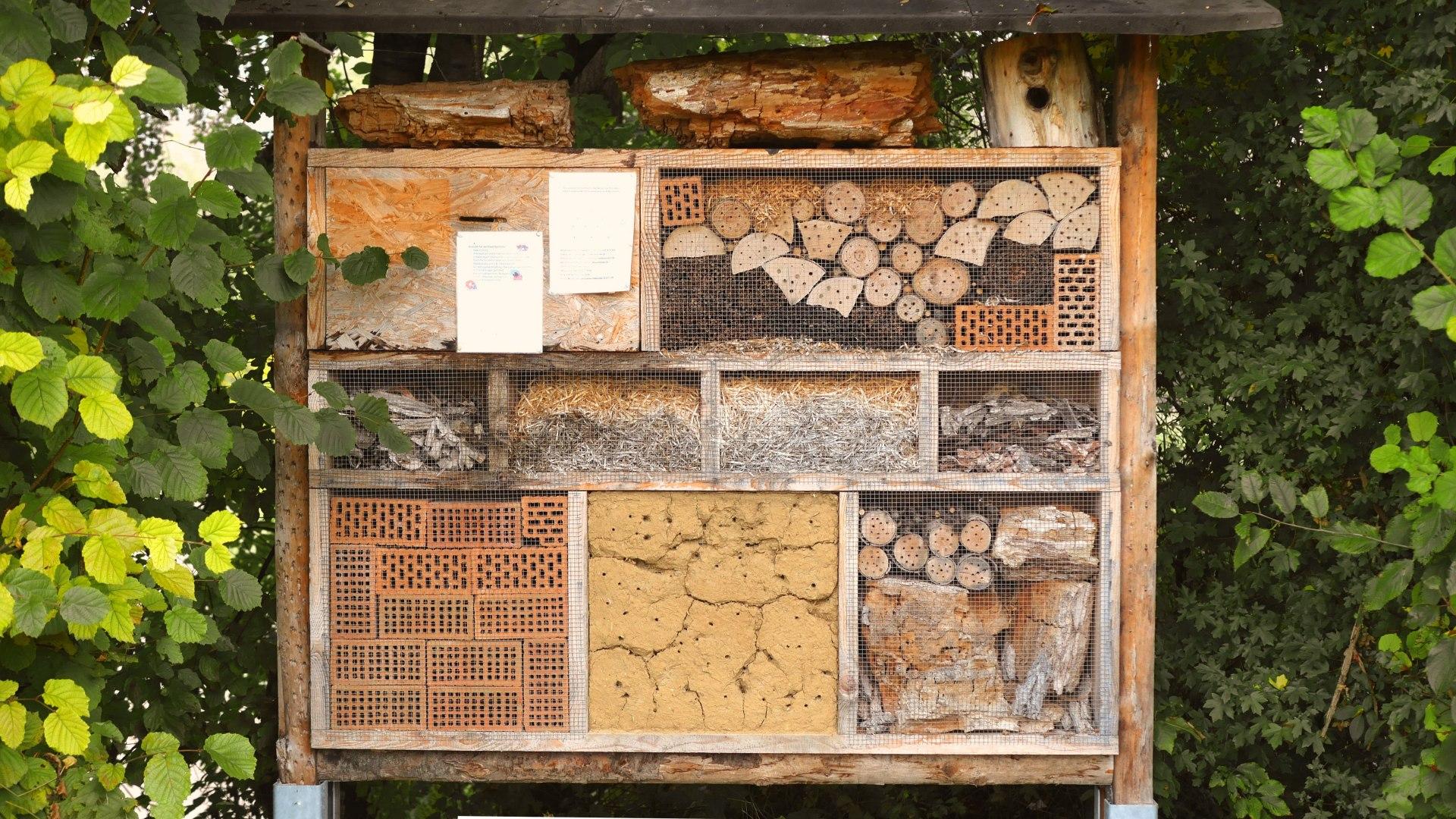 Insektenhotel, © pronatour